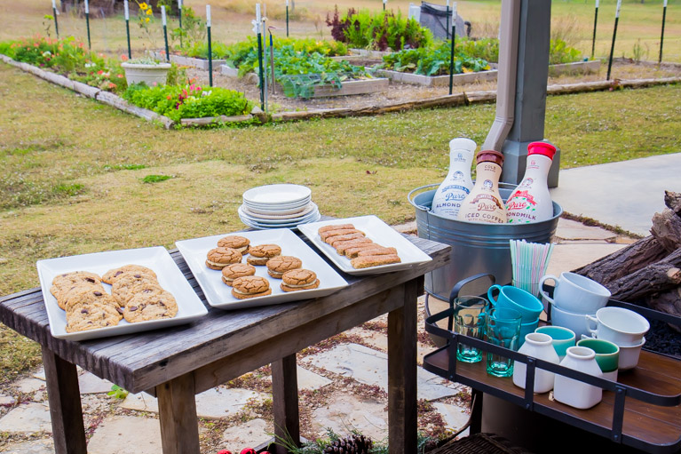 How to throw a Milk & Cookies party! #vegan