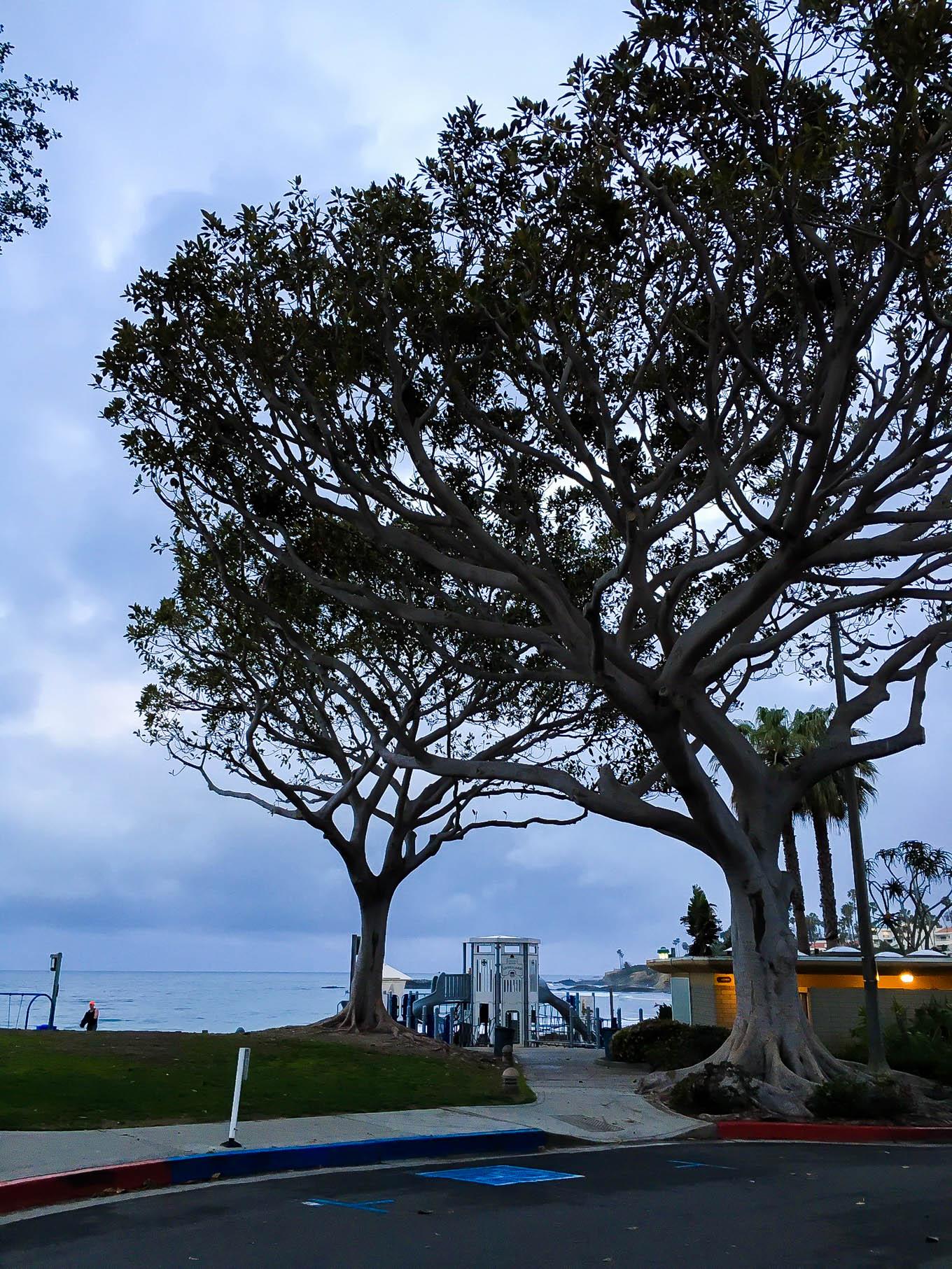 laguna beach 2016 | immaEATthat.com