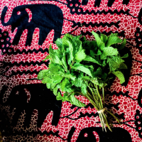 dreamy farmers market fabric | immaEATthat.com