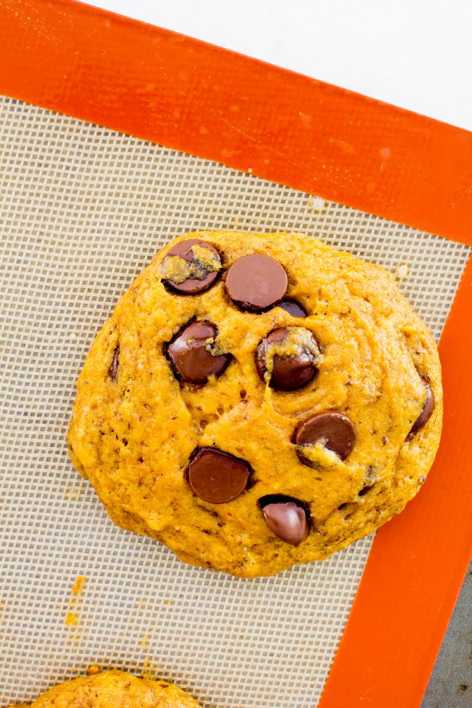 Vegan pumpkin chocolate chip cookies. An easy and delicious baked good for fall! | immaEATthat.com