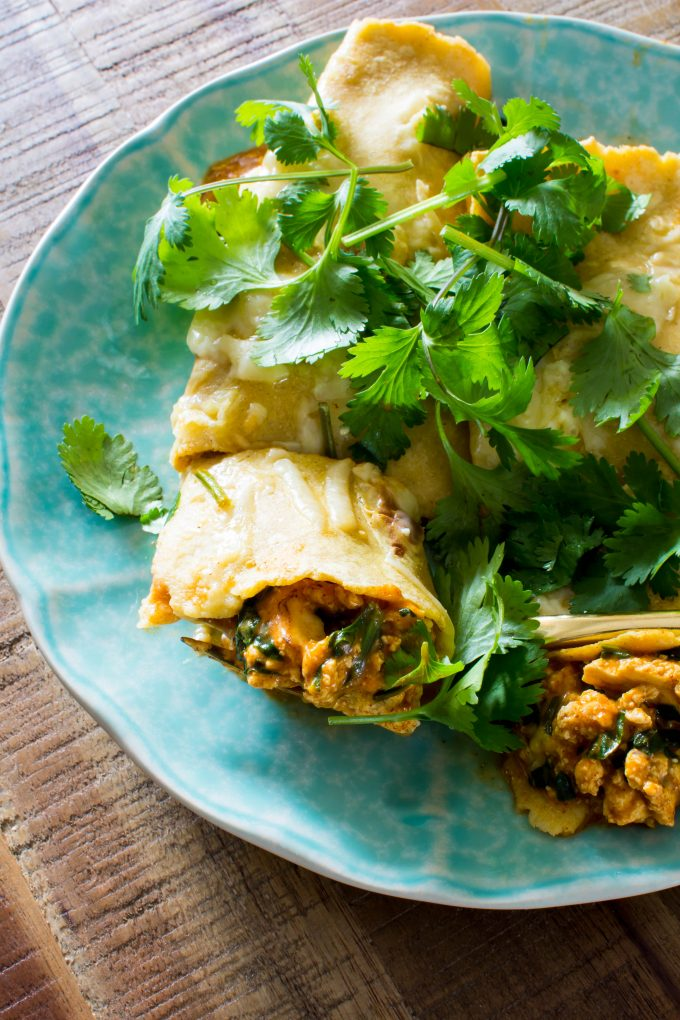 Only 6-ingredients for the best vegetarian enchiladas. Super simple & easy! | immaEATthat.com