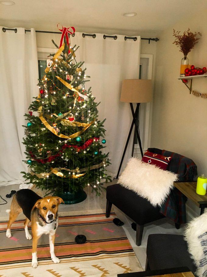 christmas time! YAY!